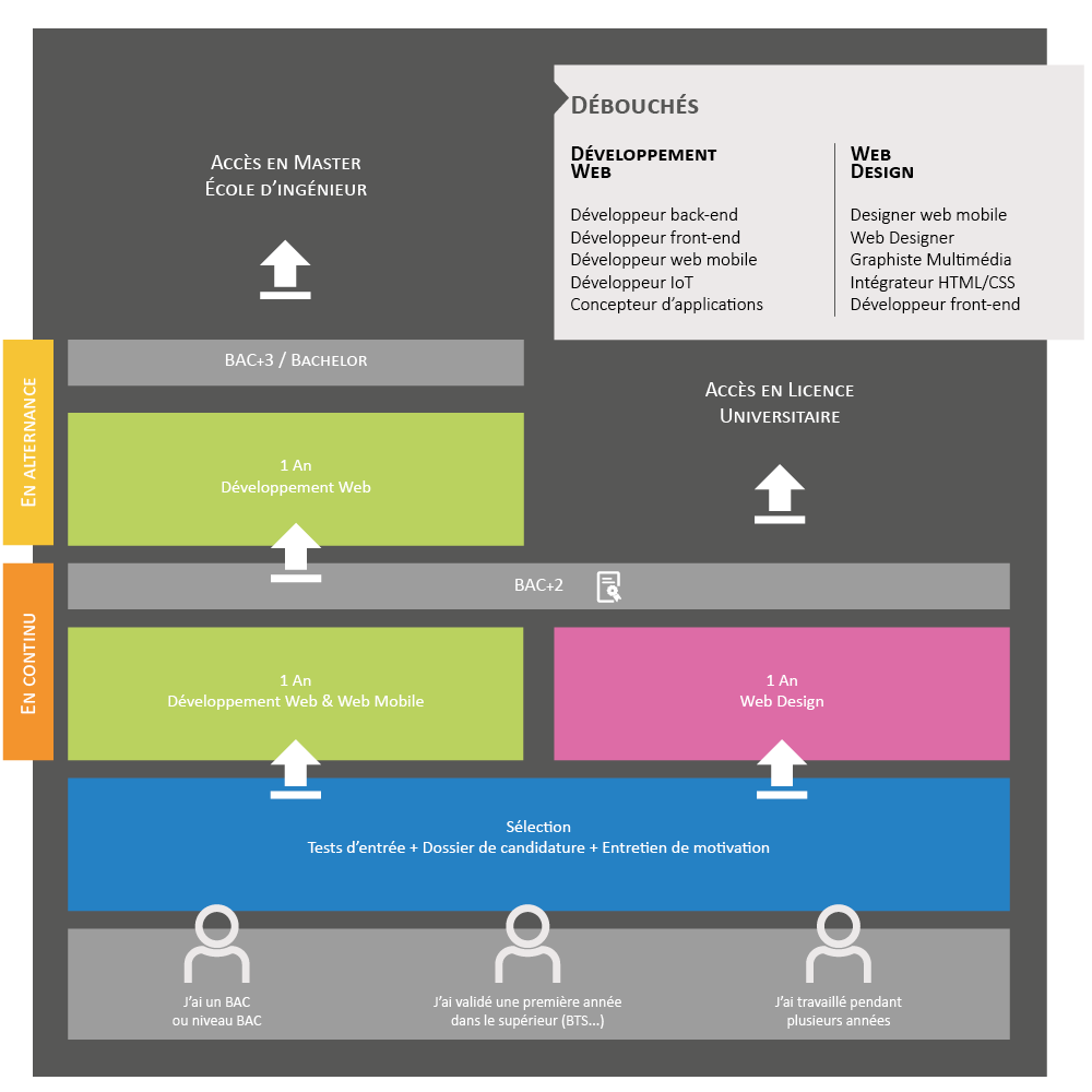 Schéma des études - Ecole Supérieure du Web CEFii